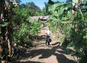Venta  de  terreno  reforestado