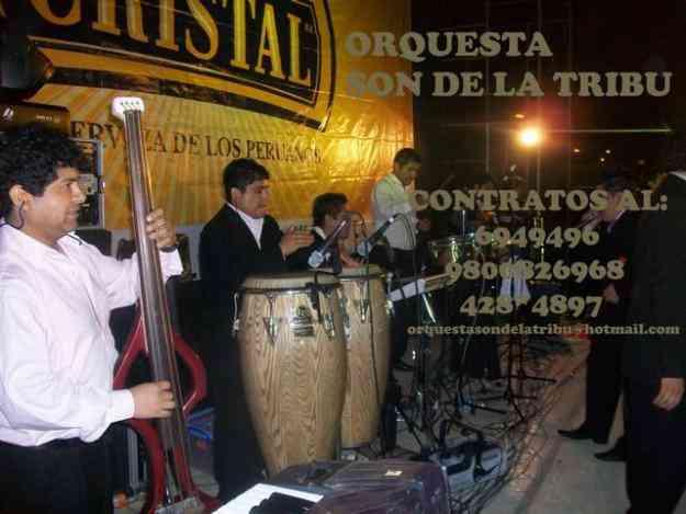orquesta en vivo la tribu banda show