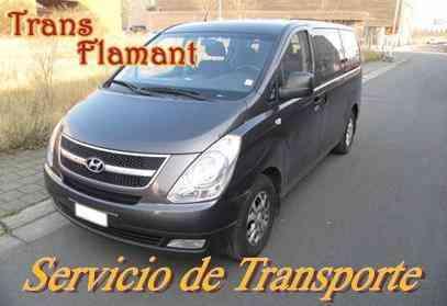 Alquiler de Movilidad: Hyundai H-1