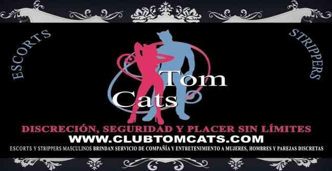 ACOMPAÑANTES MASCULINOS: CLUB TOM CATS