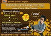 Registro de dominio + alojamiento web + diseño web