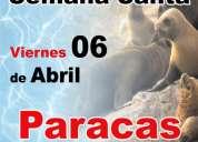 Islas ballestas -paracas  todo por 140 soles ,,,,,,,,,,,,,,que esperas