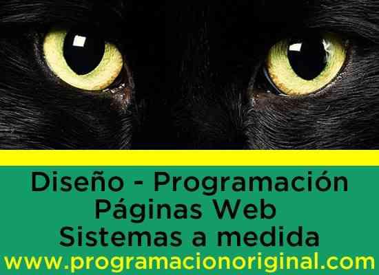 programacion de sistemas para empresas paginas web lima