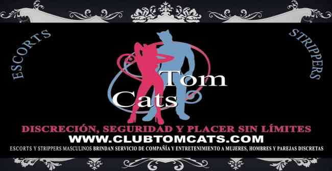 ACOMPAÑANTES MASCULINOS: CLUB TOM CATS