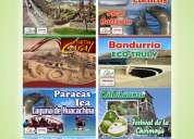 Full day paracas - islas ballestta - chincha
