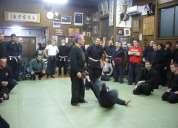 Escuela de artes marciales ninja en ica peru bujinkan