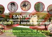 Exterminio de plagas por fumigacion con garantia 5678379 829*9169