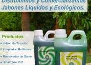 Ecology world – productos  ecologicos de limpieza – master clean – lima