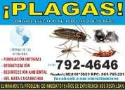 Empresa de fumigacion christiam love sac 792-4646