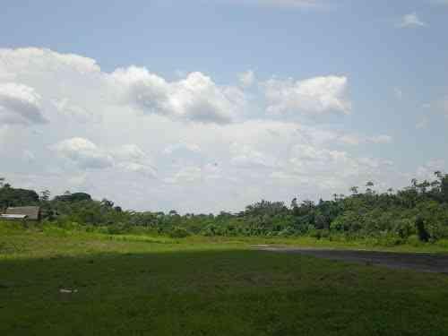 1263 hectáreas para ganadería o agricultura